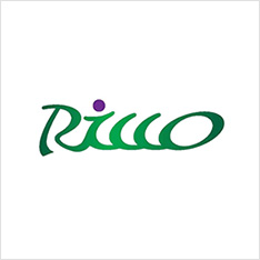 RICCO ENGINEERING INTERNATIONAL INC.