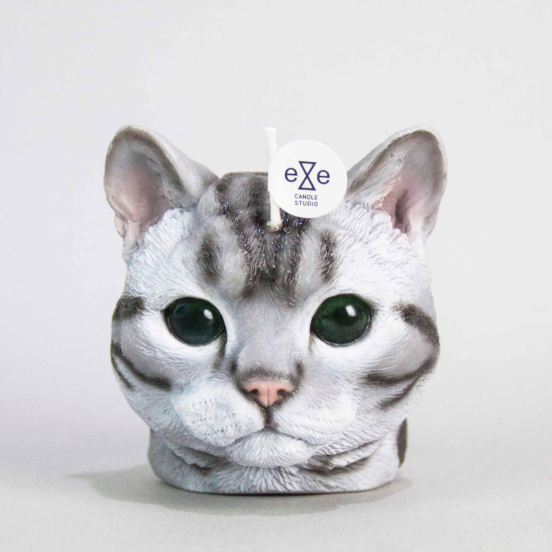 AMERICAN SHORTHAIR CANDLE